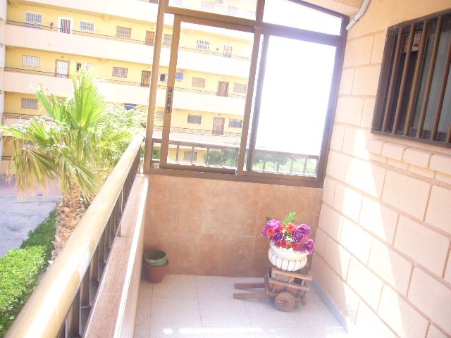 Apartamento en Venta en Alicante (La Mata) Ref.:221 Foto 10