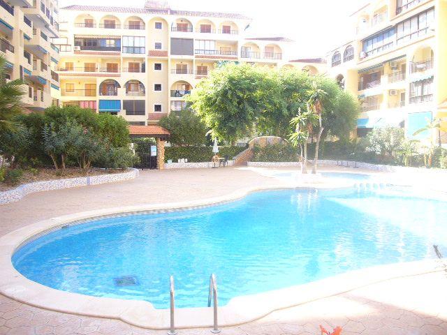Apartamento en Venta en Alicante (La Mata) Ref.:255 Foto 13